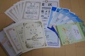 2008_sho.jpg